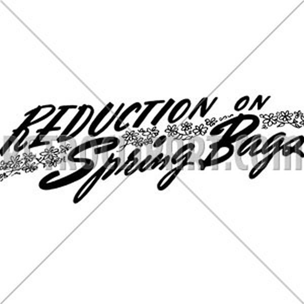Reduction On Spring Bags